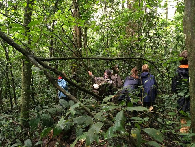 Kibale Forest, people trekking, Uganda