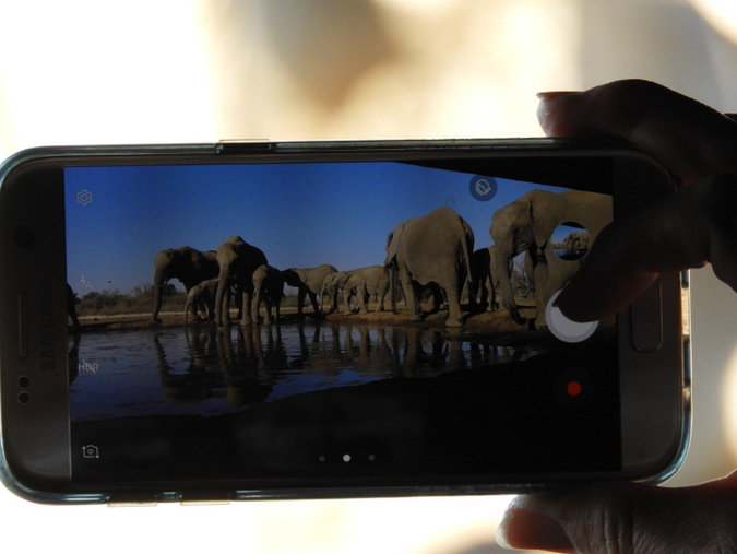 photographic hide, elephants, smartphone, wildlife, Botswana