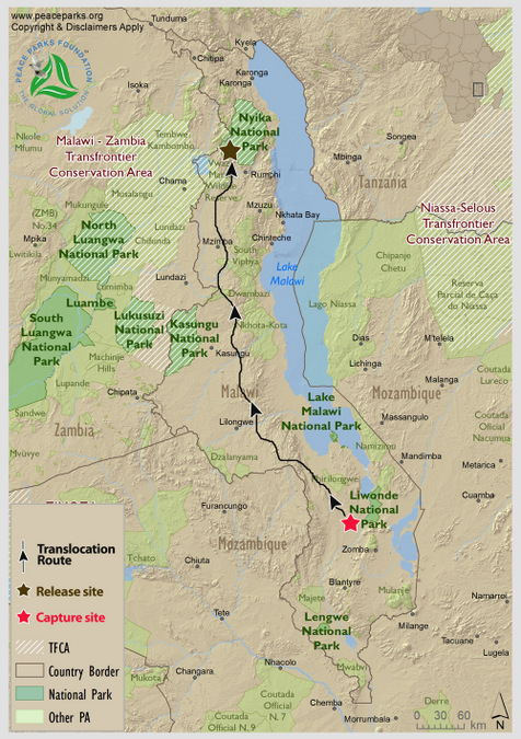 The 700km from Liwonde to Nyika, Malawi, map