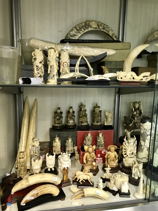 hippo teeth products, ivory, Hong Kong