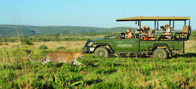 game drive vehicle, leopard, photographic safari