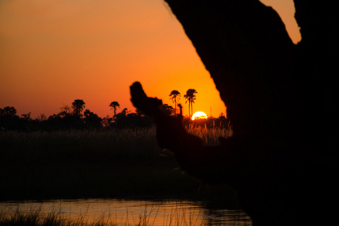 The sunset over the Okavango Delta
