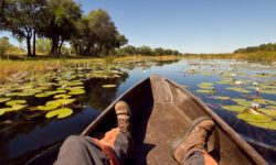 Okavango Delta, Botswana © Christian Boix, feet on safari, Africa