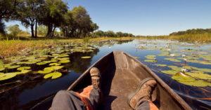 Okavango Delta, Botswana © Christian Boix, feet on safari, Africa