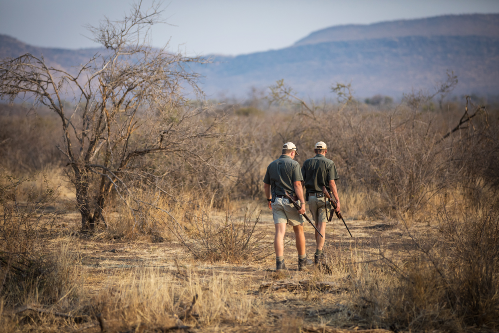 Two rangers walking through Madikwe Game Reserve