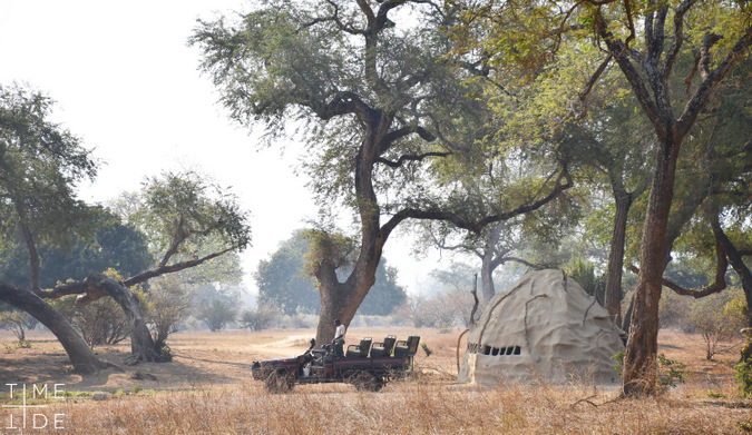 Safari vehicle and wildlife hide