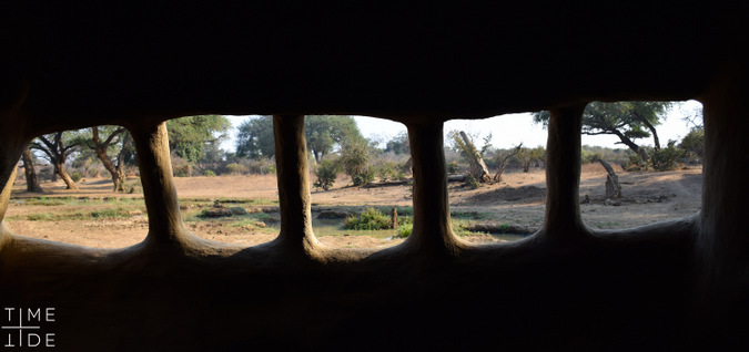 Looking out from the wildlife hide