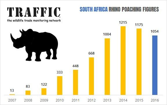 Table of statistics regarding poached rhinos