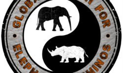 Logo for Global march for elephants and rhinos