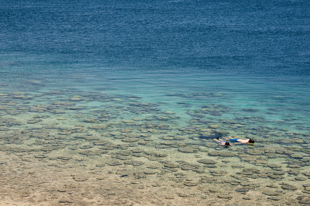 Snorkelling in the Quirimbas National Park