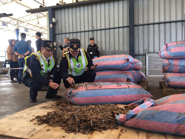 Shenzhen Customs seize 11.9 tons of pangolin scales smuggled from Africa