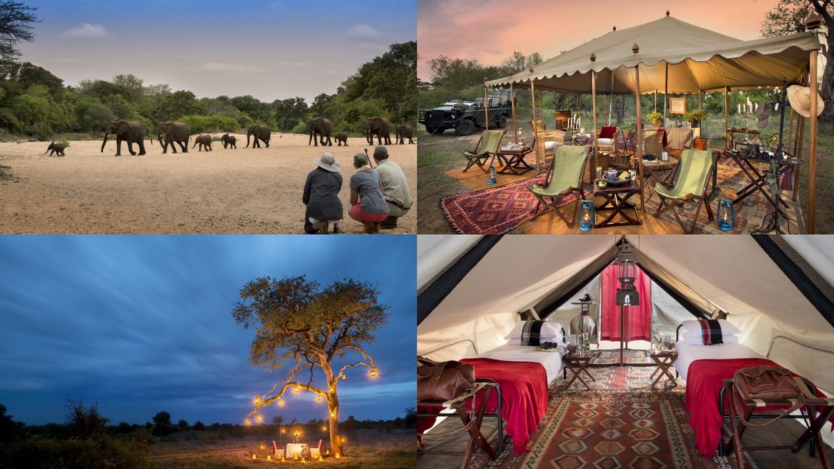 Four photos representing the luxury of Tanda Tula Field Camp