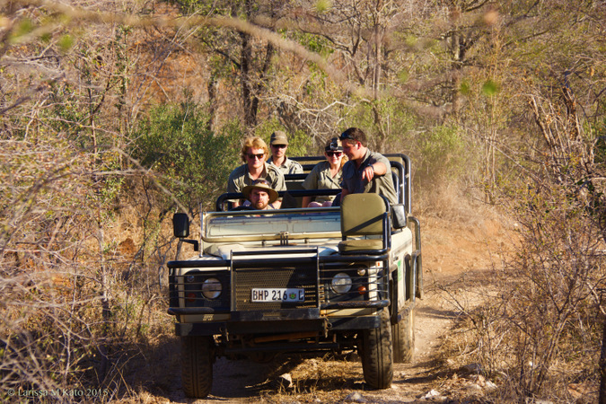 Field guides in a 4x4 safari vehicle