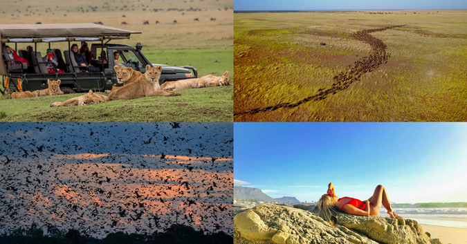 Collage of four African travel photos