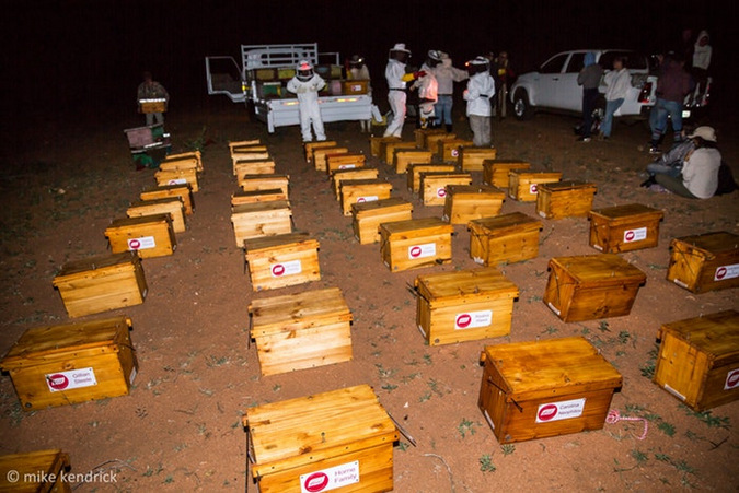 Beehives delivered to Jejane Private Nature Reserve