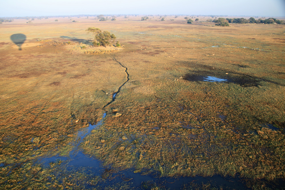 View of Kafue National Park from hot air balloon