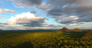 Niassa National Reserve CREDIT JEAN-BAPTISTE DEFFONTAINES (1)