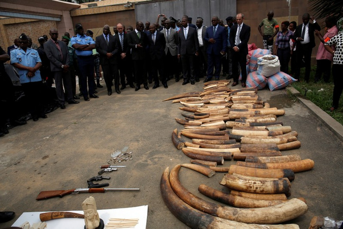 Elephant tusks, guns and bags of pangolin scales seized from traffickers