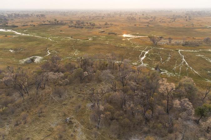 Okavango Delta island, Botswana