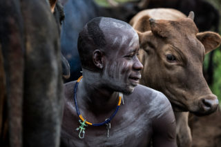 A Surma cattleman sitting between his cattle in Kibish, southern Ethiopia © Susan Greeff