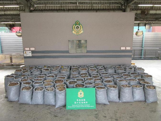 Pangolin scales and ivory from Nigeria seized in Asia