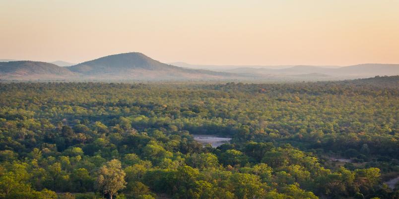 Luangwa Valley landscape