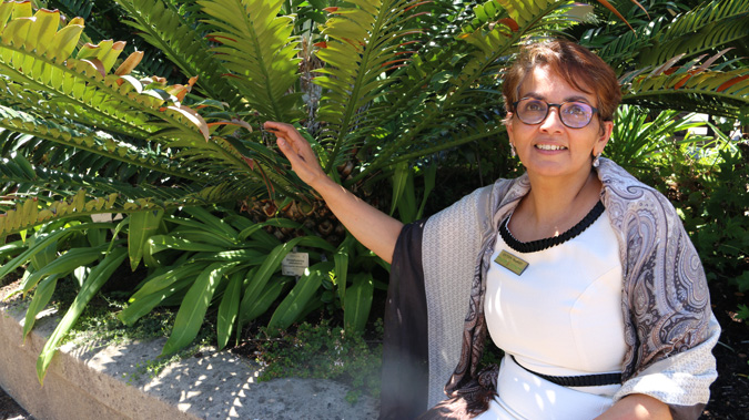 Zaitoon Rabaney, Executive Director of BotSoc with cycad in Kirstenbosch Botanical Gardens, South Africa
