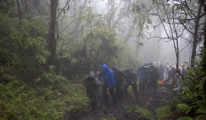 Trekking through the mist in the jungle, DR Congo