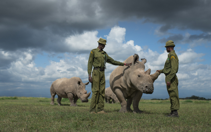 Peter and Jacob caregivers of the last three northern white rhino on earth. Sudan, the last male northern white rhino, sadly passed away in March 2018