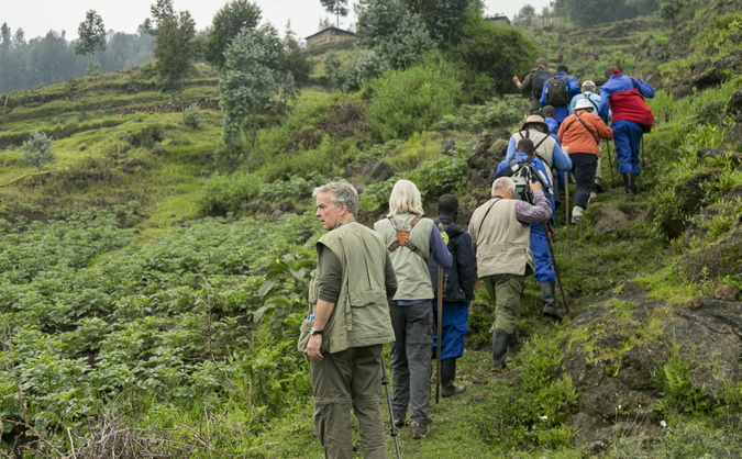 Hikers going on a gorilla trekking experience through the rainforest