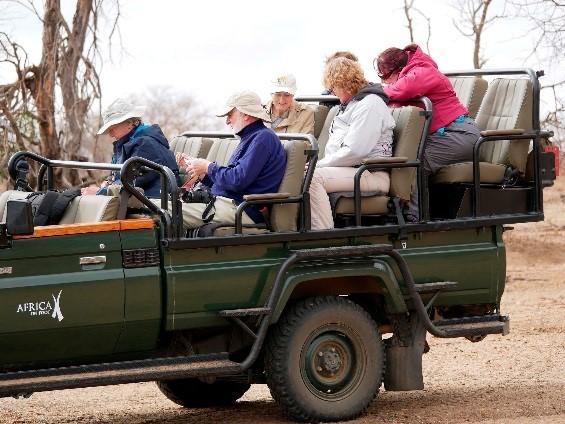 Guest in a safari vehicle