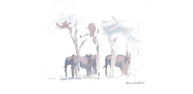 Watercolour painting of elephants