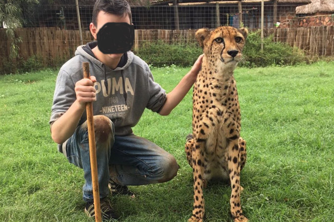 Cheetah encounters at Glen Afric