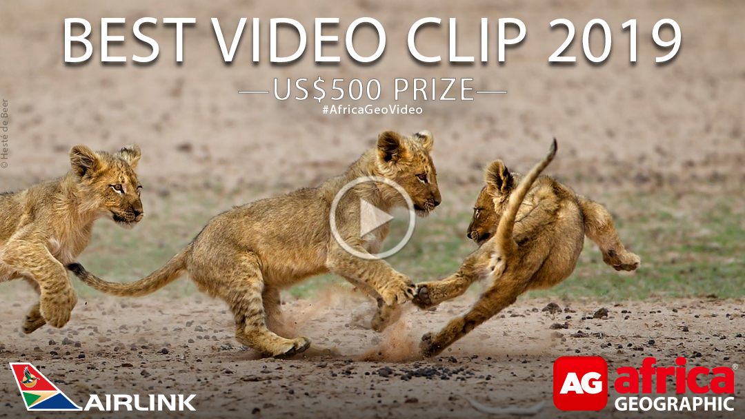 Africa Geographic Best Video Clip 2019 Competition