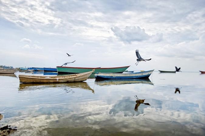 Lake Albert, Uganda, stock image