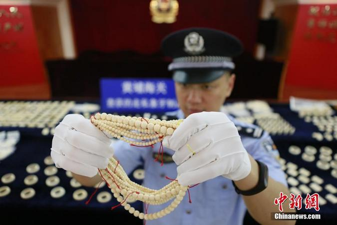 Customs official in China holding seized ivory