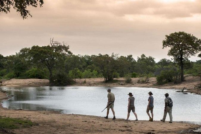 People walking on a walking safari in Tanda Tula