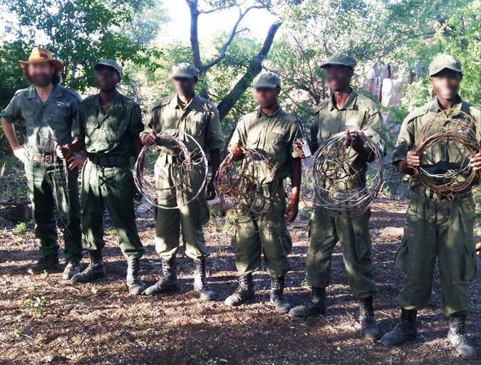 Rangers with wire snares