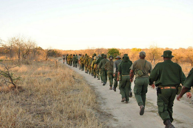 Rangers marching in single file