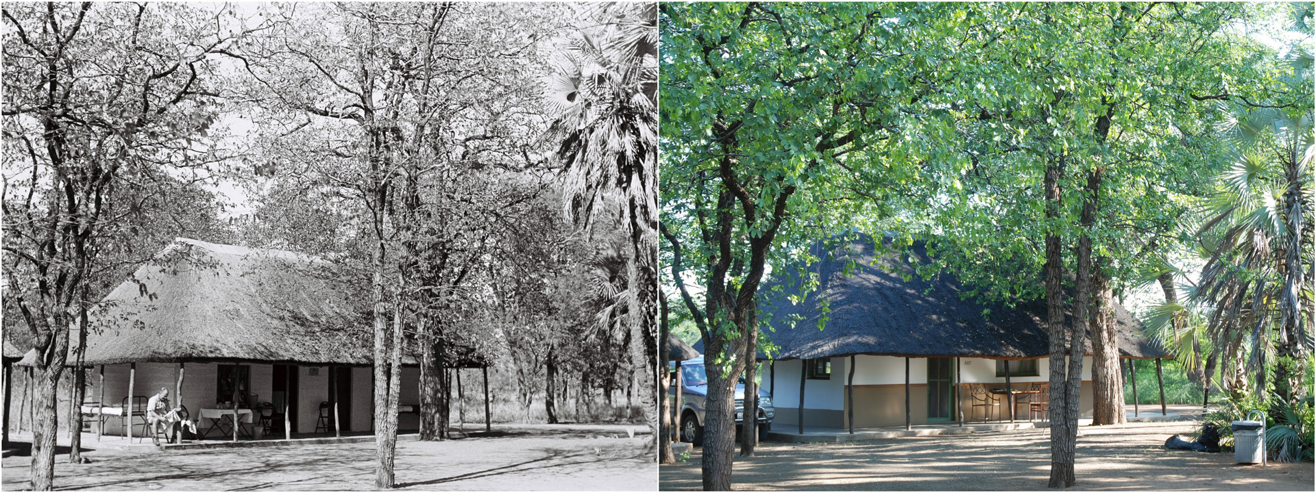 Then and now of Shingwedzi Camp 1956 and present