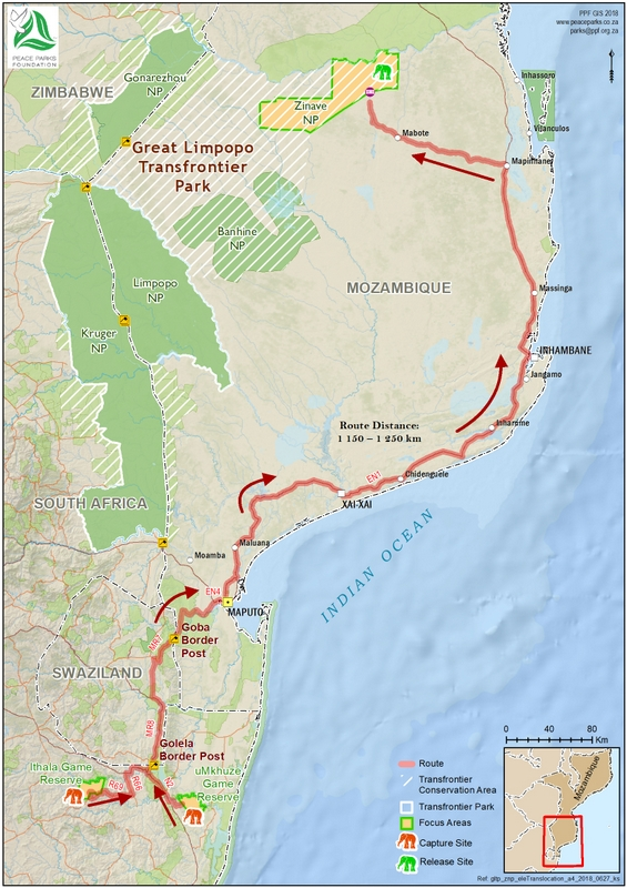 Map showing route elephants took on relocation