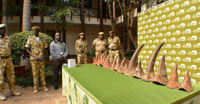 18 Rhino horns displayed for the media