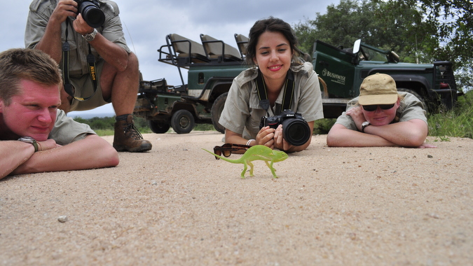 Bushwise students on the ground studying a chameleon