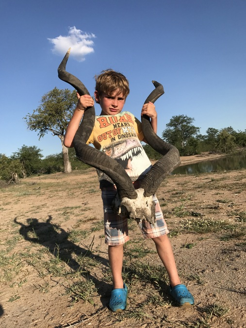 Kid with large antelope skull while on safari