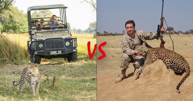 Leopard with safari guests versus trophy hunter with dead leopard © Africa Geographic