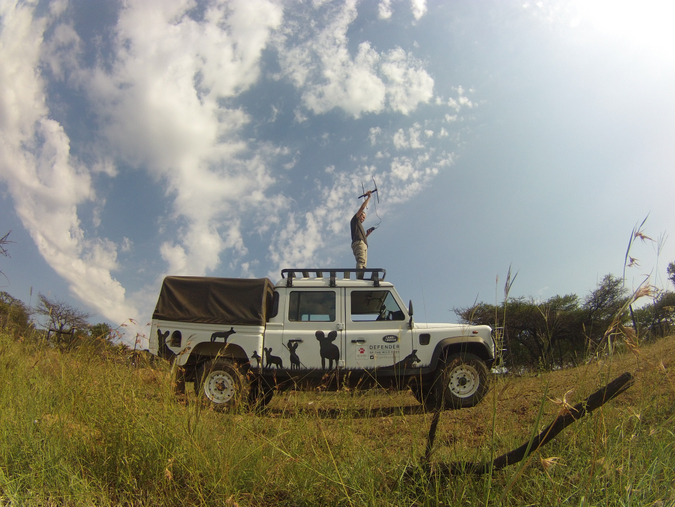 Tracking wild dogs in the wild