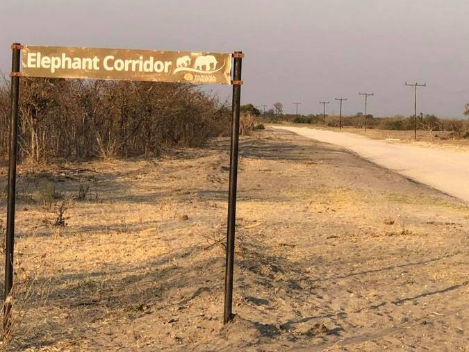 Elephant corridor sign in Botswana