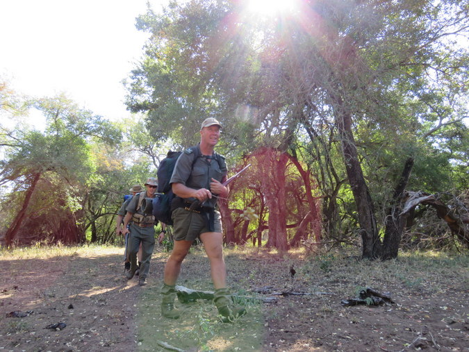 Rangers walking in Kruger National Park in South Africa
