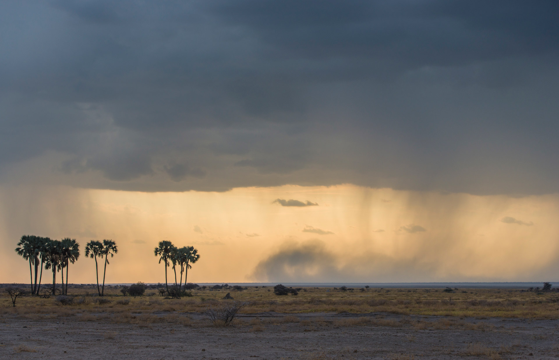 Thundershower over Fishers Pan in Etosha National Park