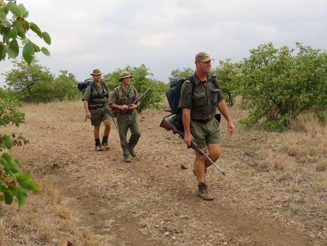Three rangers walking in Kruger National Park in South Africa